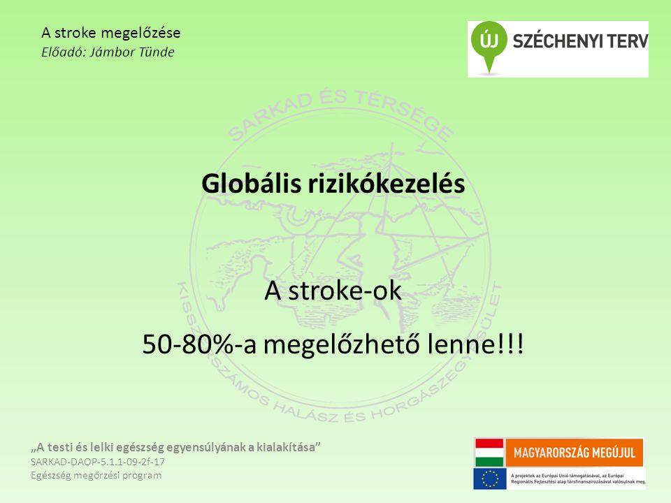 Globális rizikókezelés A stroke-ok 50-80%-a megelőzhető lenne!!!