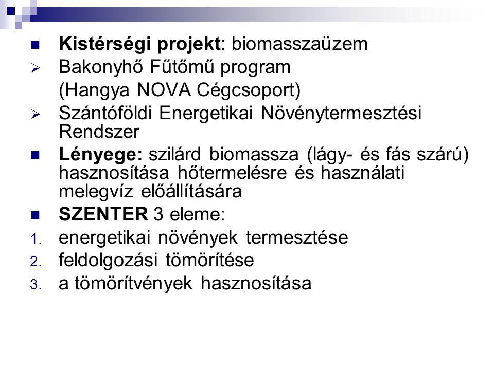 Kistérségi projekt: biomasszaüzem