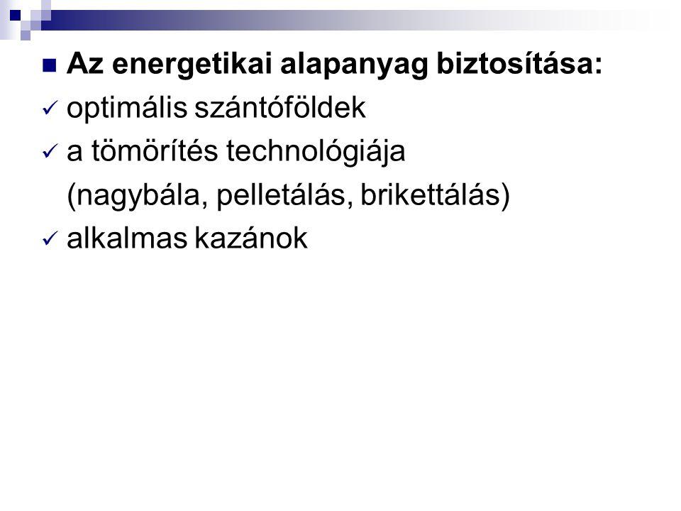 Az energetikai alapanyag biztosítása: