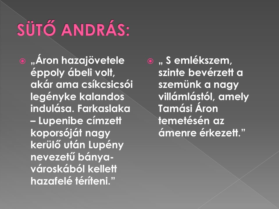 SÜTŐ ANDRÁS: