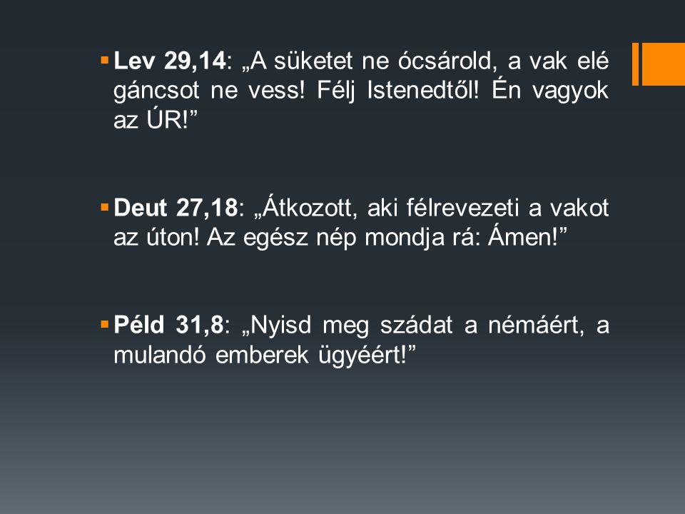 "Lev 29,14: ""A süketet ne ócsárold, a vak elé gáncsot ne vess"