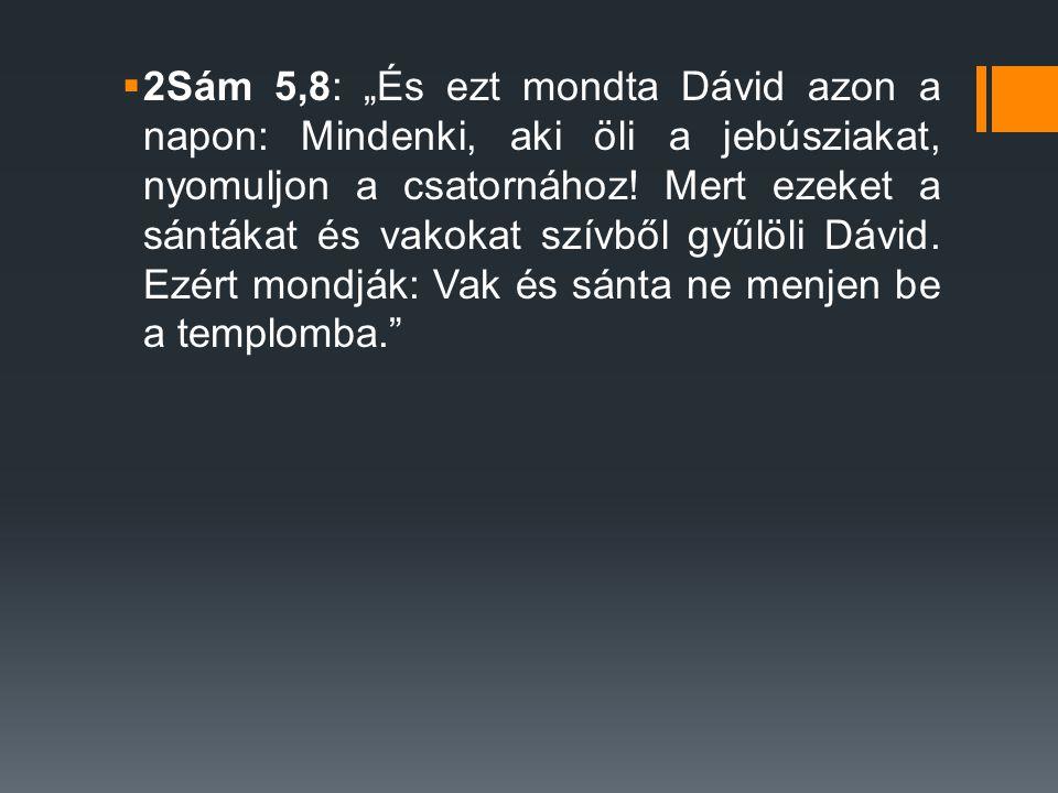 """2Sám 5,8: """"És ezt mondta Dávid azon a napon: Mindenki, aki öli a jebúsziakat, nyomuljon a csatornához."""