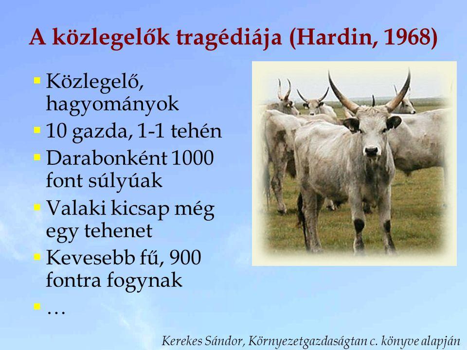 A közlegelők tragédiája (Hardin, 1968)