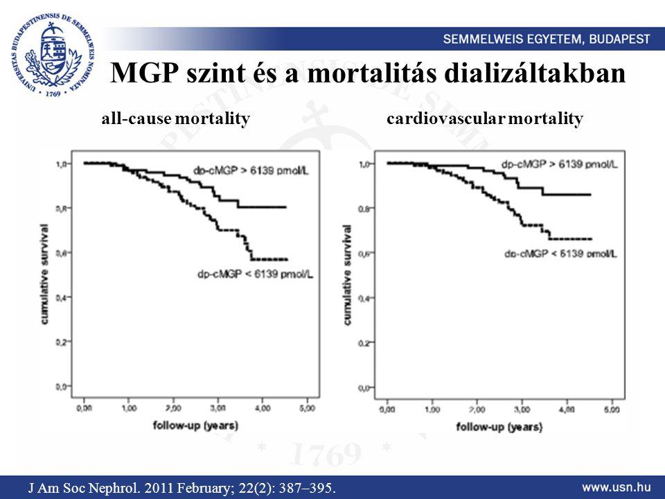 MGP szint és a mortalitás dializáltakban