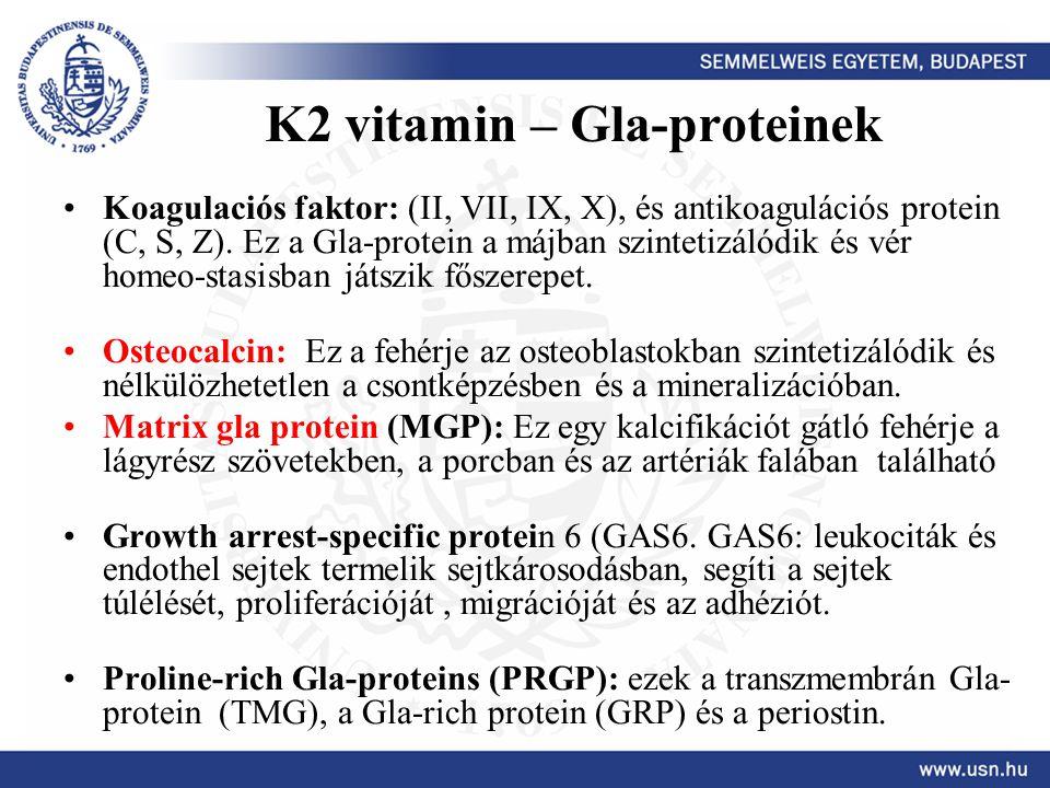 K2 vitamin – Gla-proteinek