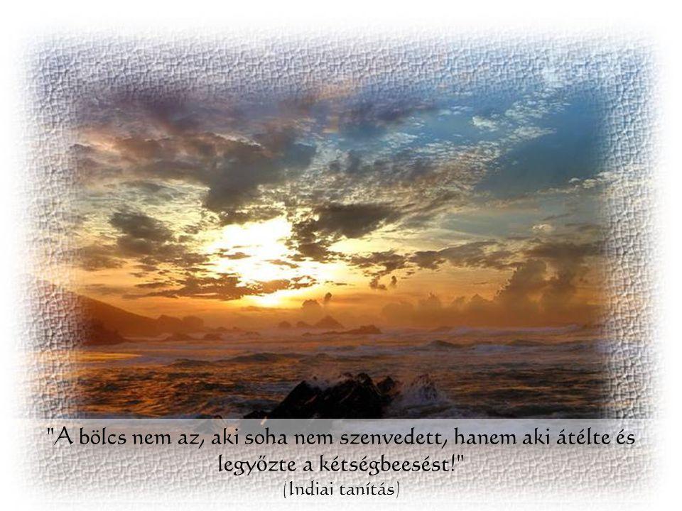 A bölcs nem az, aki soha nem szenvedett, hanem aki átélte és legyőzte a kétségbeesést! (Indiai tanítás)