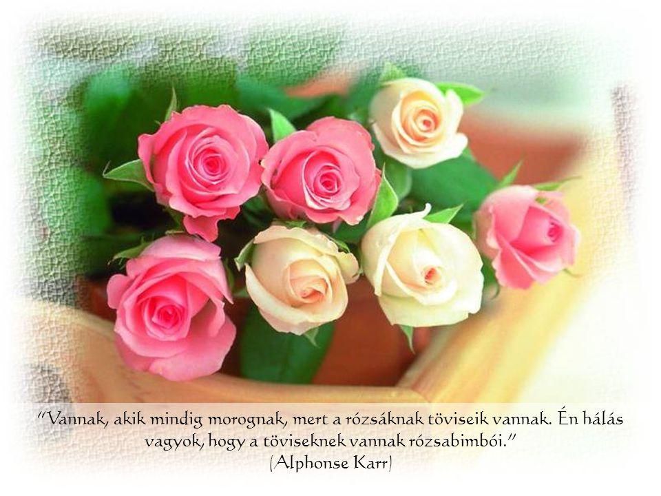 Vannak, akik mindig morognak, mert a rózsáknak töviseik vannak