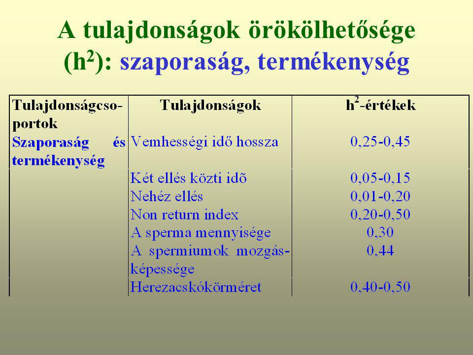 A tulajdonságok örökölhetősége (h2): szaporaság, termékenység