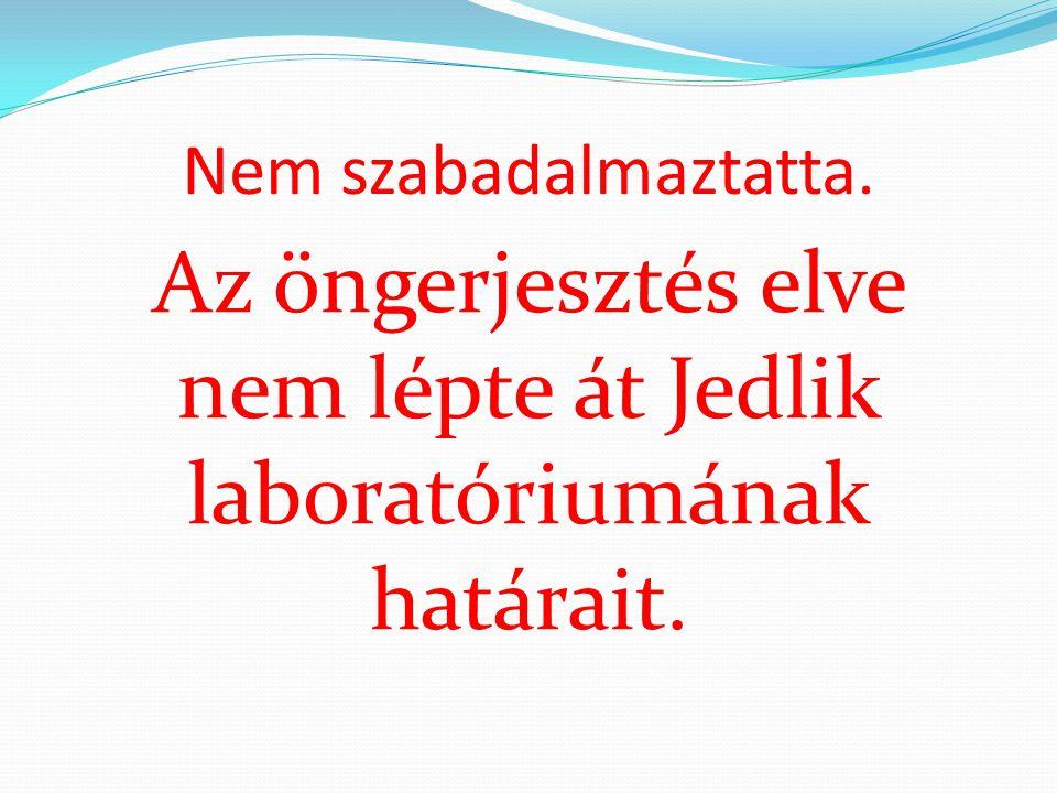 Az öngerjesztés elve nem lépte át Jedlik laboratóriumának határait.