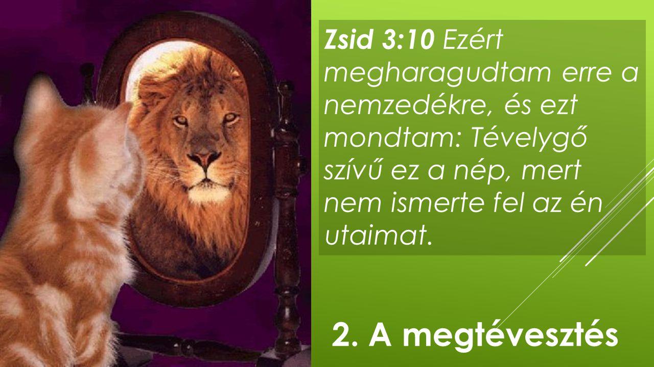 Zsid 3:10 Ezért megharagudtam erre a nemzedékre, és ezt mondtam: Tévelygő szívű ez a nép, mert nem ismerte fel az én utaimat.