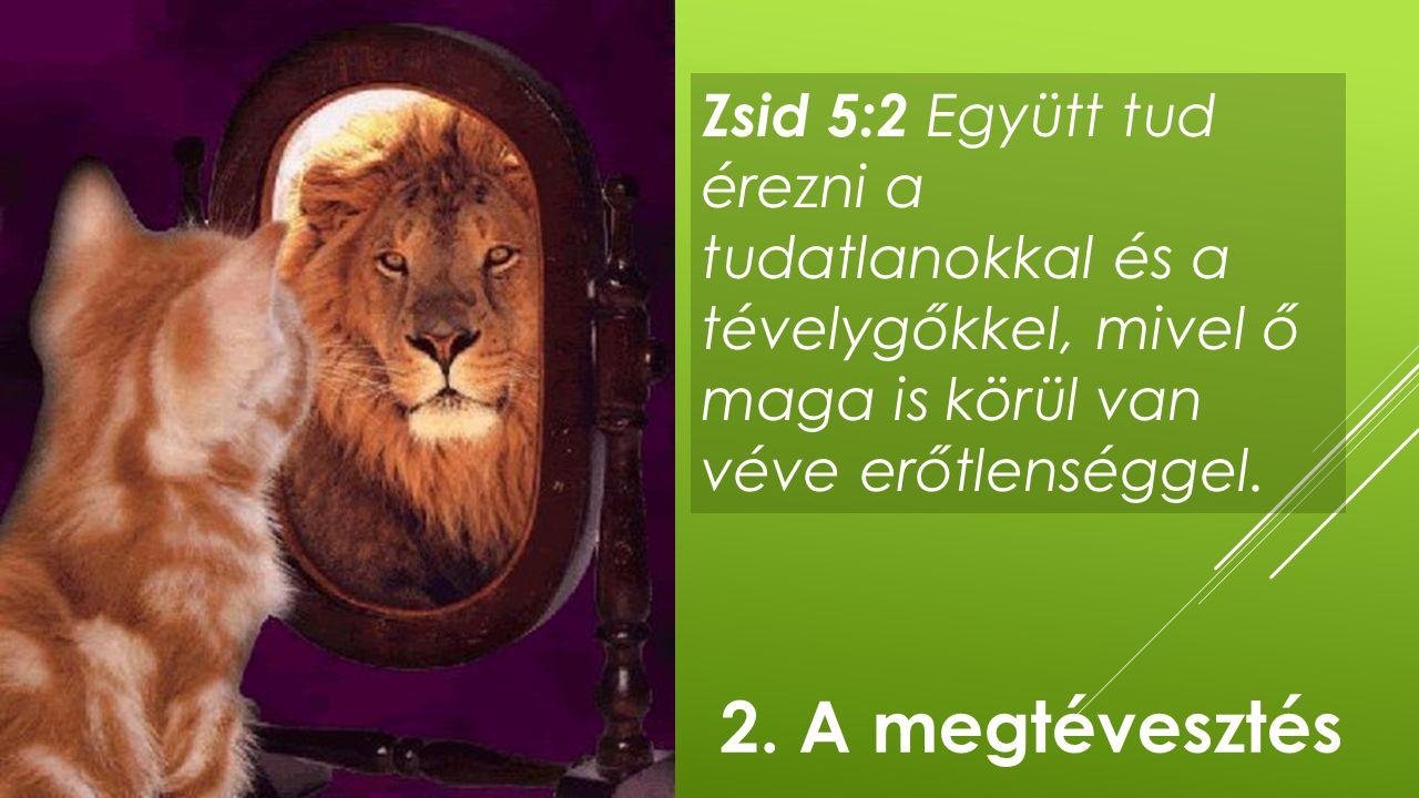 Zsid 5:2 Együtt tud érezni a tudatlanokkal és a tévelygőkkel, mivel ő maga is körül van véve erőtlenséggel.