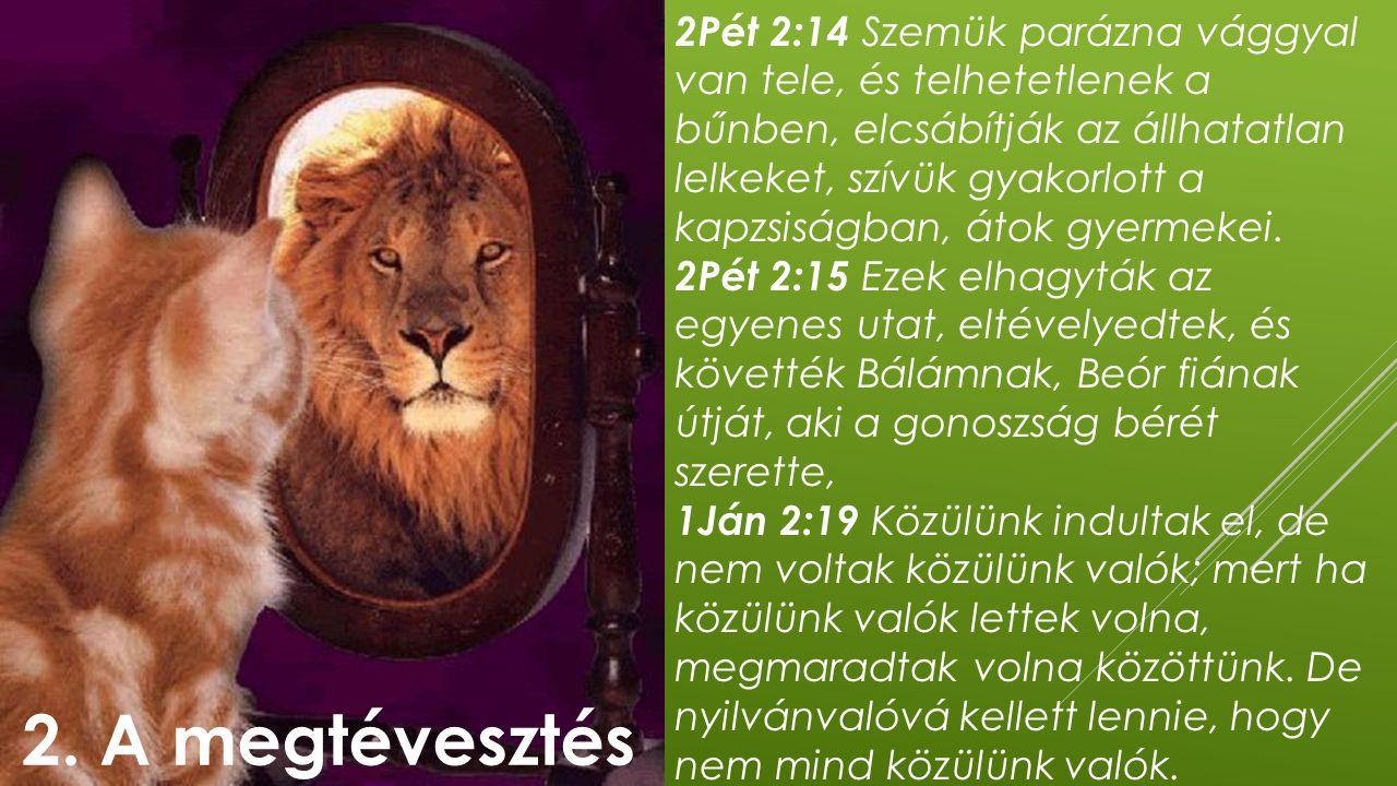 2Pét 2:14 Szemük parázna vággyal van tele, és telhetetlenek a bűnben, elcsábítják az állhatatlan lelkeket, szívük gyakorlott a kapzsiságban, átok gyermekei.