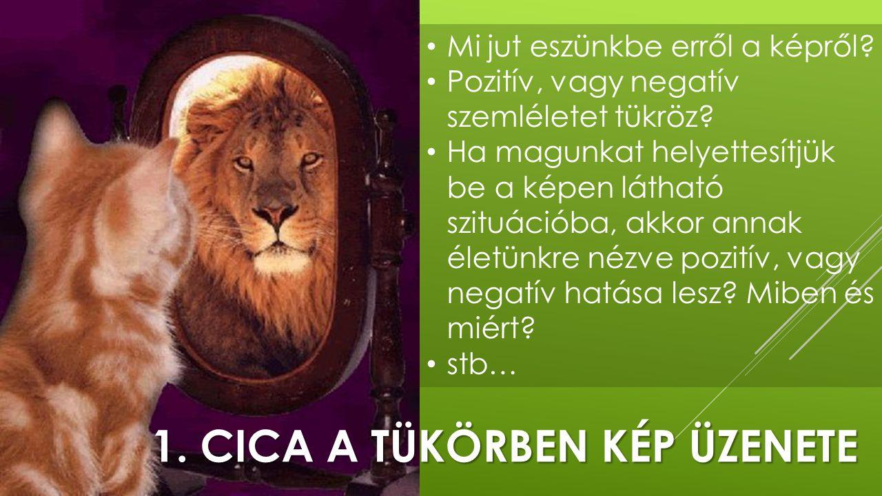 1. Cica a tükörben kép üzenete