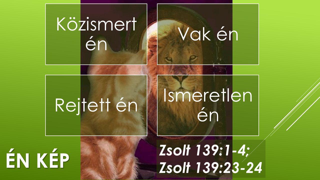 Én kép Zsolt 139:1-4; Zsolt 139:23-24 Közismert én Vak én Rejtett én