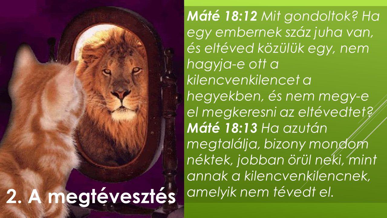 Máté 18:12 Mit gondoltok Ha egy embernek száz juha van, és eltéved közülük egy, nem hagyja-e ott a kilencvenkilencet a hegyekben, és nem megy-e el megkeresni az eltévedtet