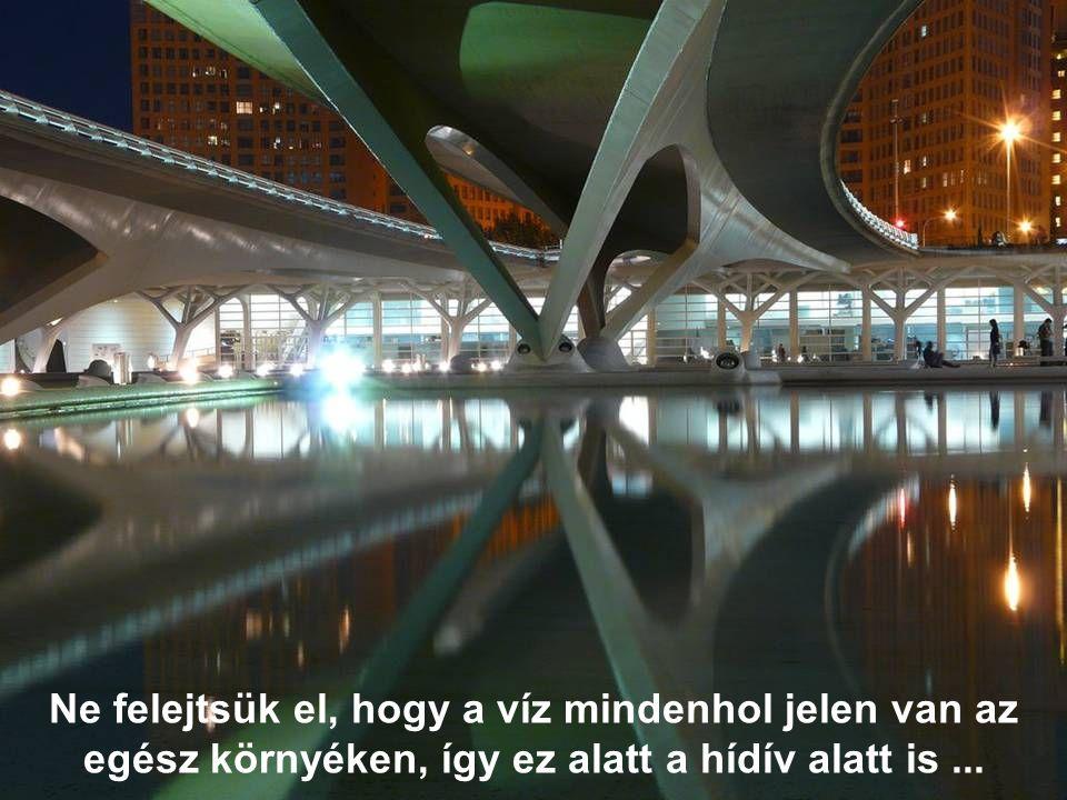 Ne felejtsük el, hogy a víz mindenhol jelen van az egész környéken, így ez alatt a hídív alatt is ...