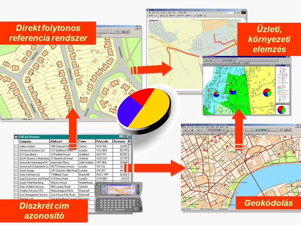 Direkt folytonos referencia rendszer Üzleti, környezeti elemzés