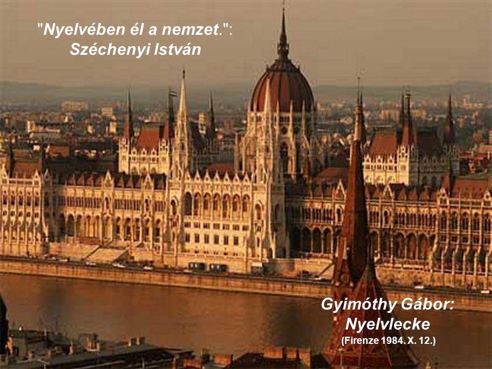 Gyimóthy Gábor: Nyelvlecke