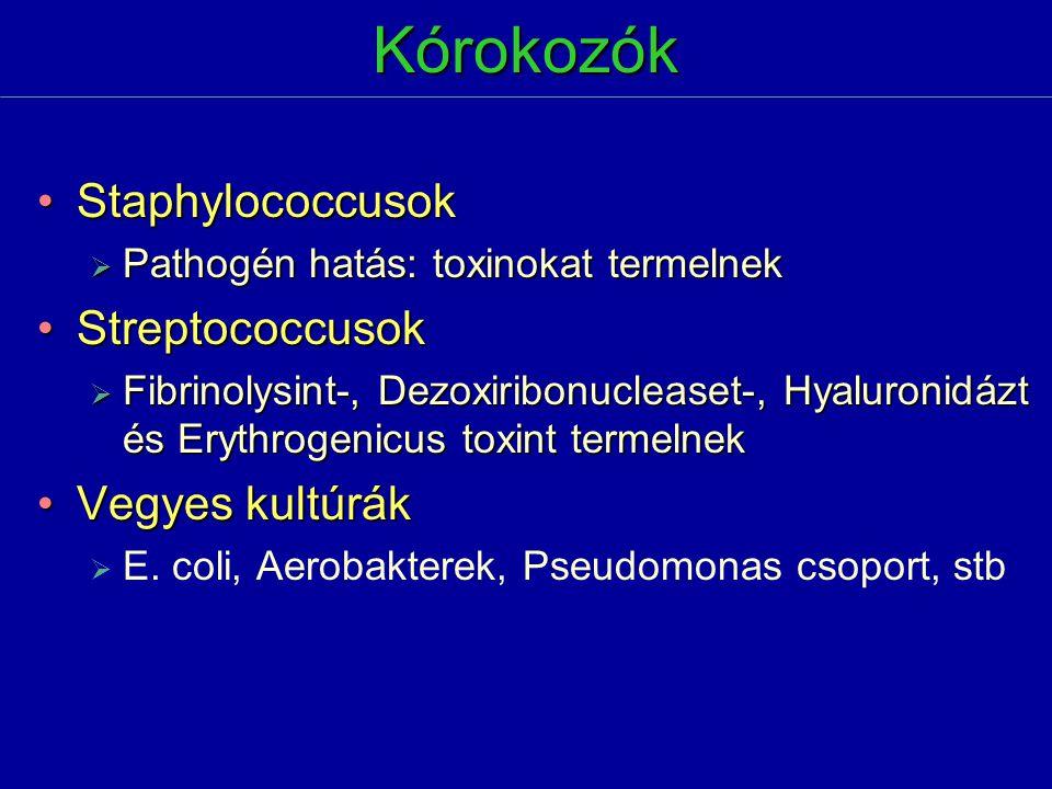 Kórokozók Staphylococcusok Streptococcusok Vegyes kultúrák