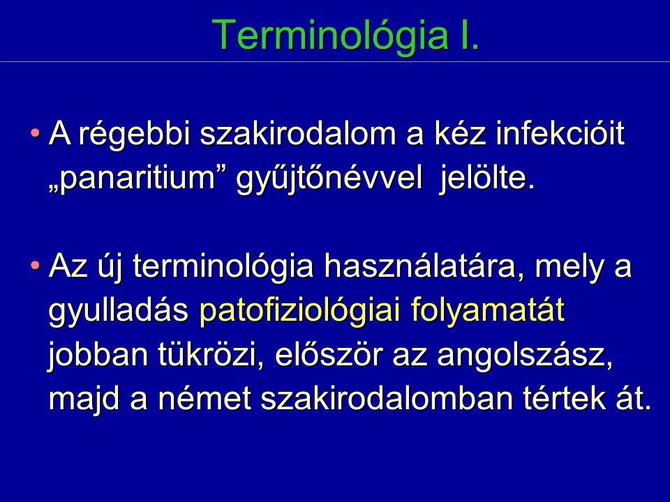 Terminológia I. A régebbi szakirodalom a kéz infekcióit