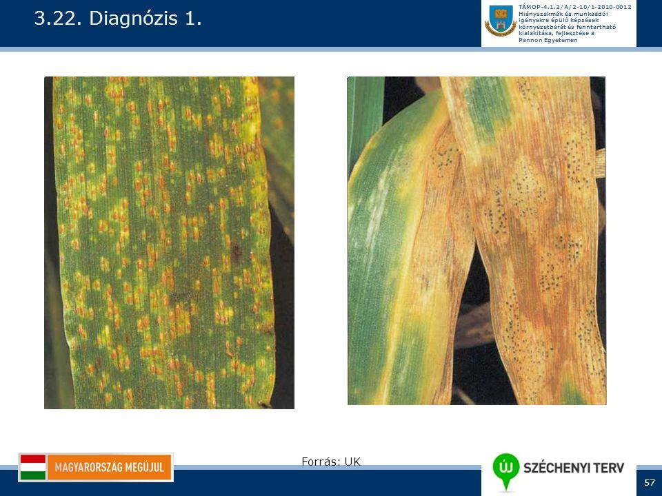 3.22. Diagnózis 1. Forrás: UK