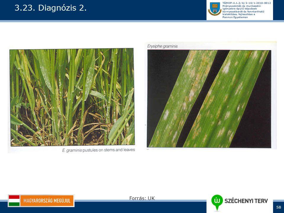 3.23. Diagnózis 2. Forrás: UK