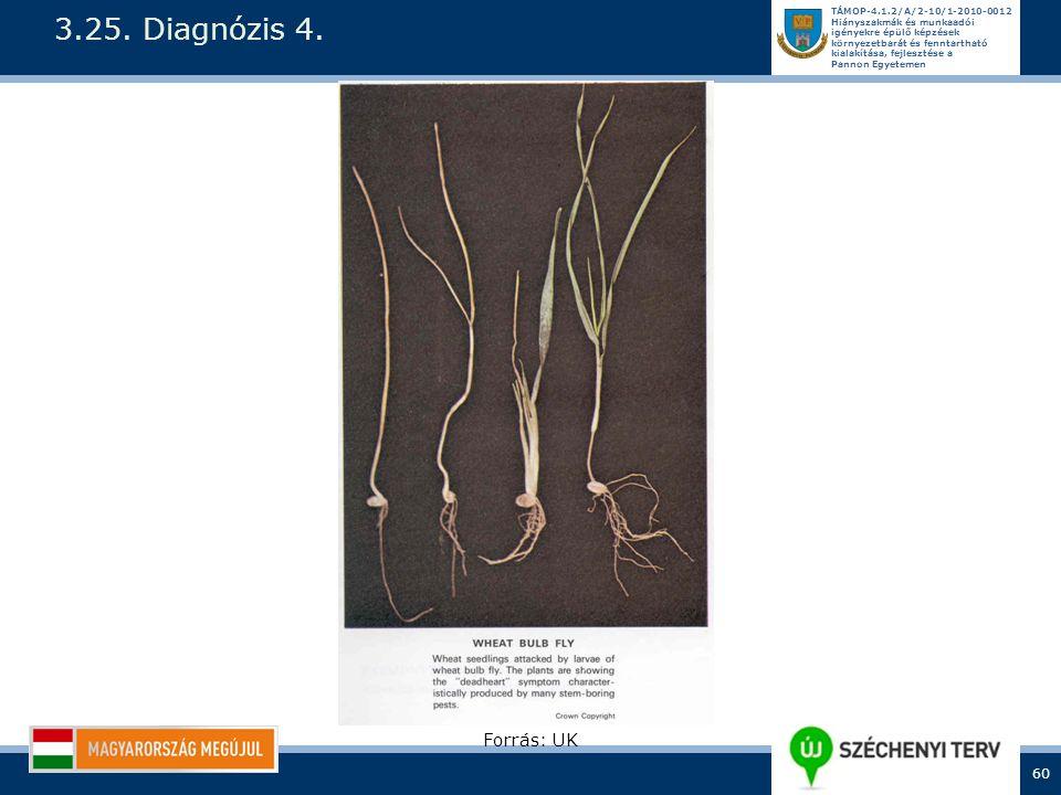 3.25. Diagnózis 4. Forrás: UK