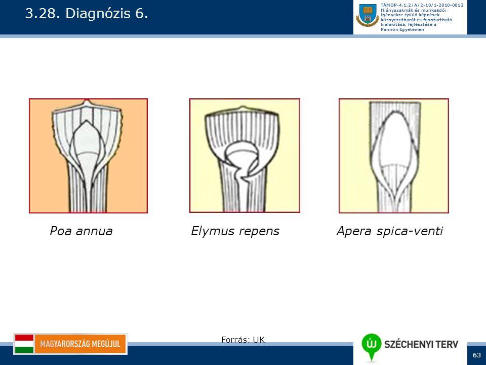 3.28. Diagnózis 6. Poa annua Elymus repens Apera spica-venti