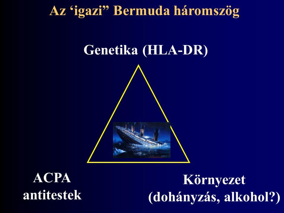 Az 'igazi Bermuda háromszög
