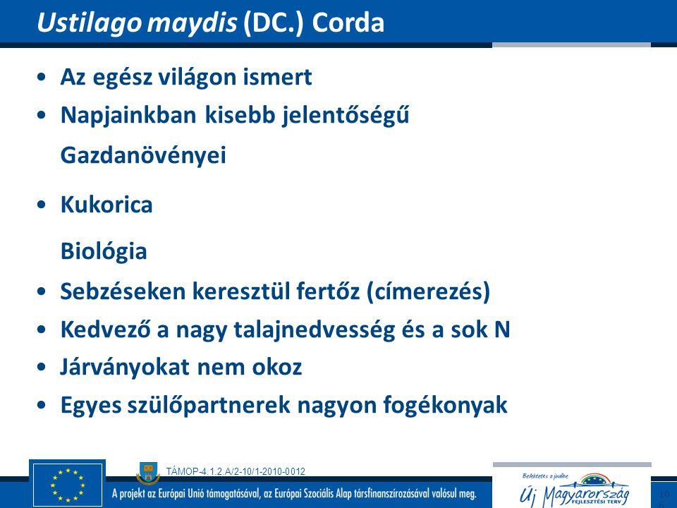 Biológia Ustilago maydis (DC.) Corda Az egész világon ismert