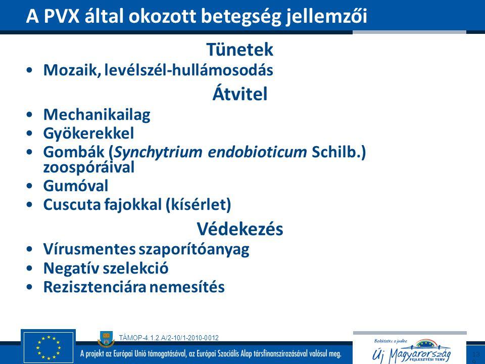 A PVX által okozott betegség jellemzői