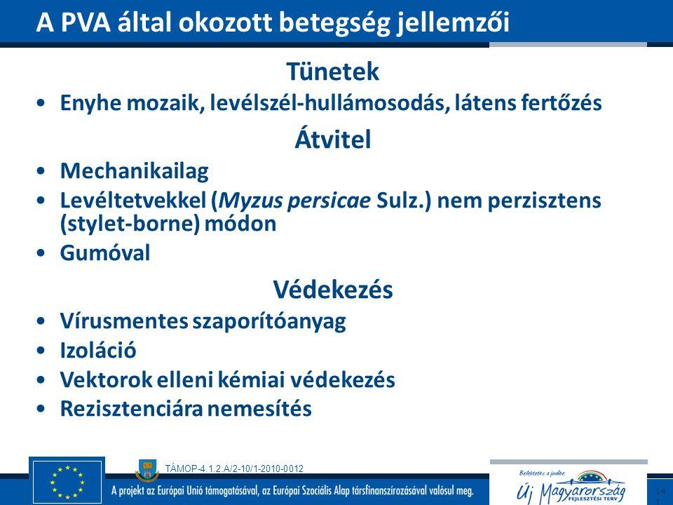 A PVA által okozott betegség jellemzői