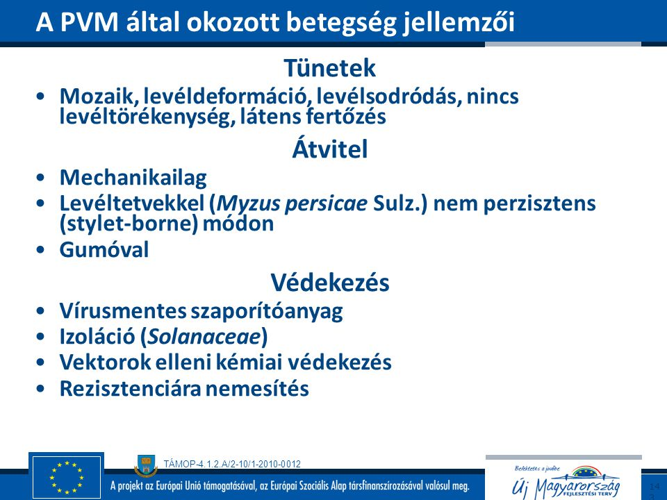 A PVM által okozott betegség jellemzői