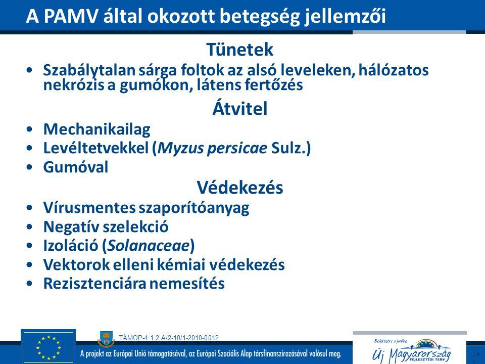A PAMV által okozott betegség jellemzői