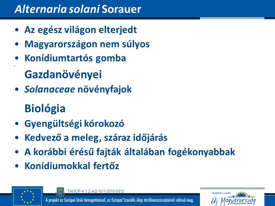Alternaria solani Sorauer