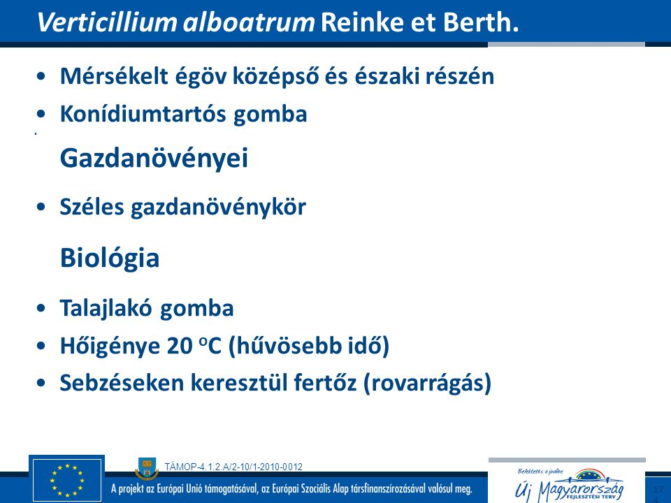 Verticillium alboatrum Reinke et Berth.