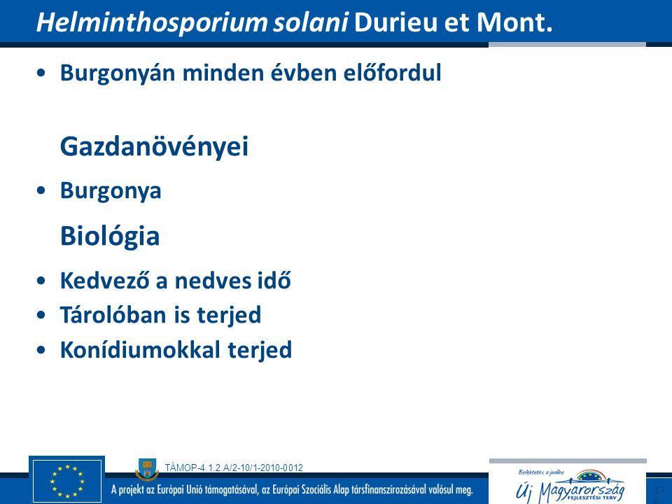 Helminthosporium solani Durieu et Mont.