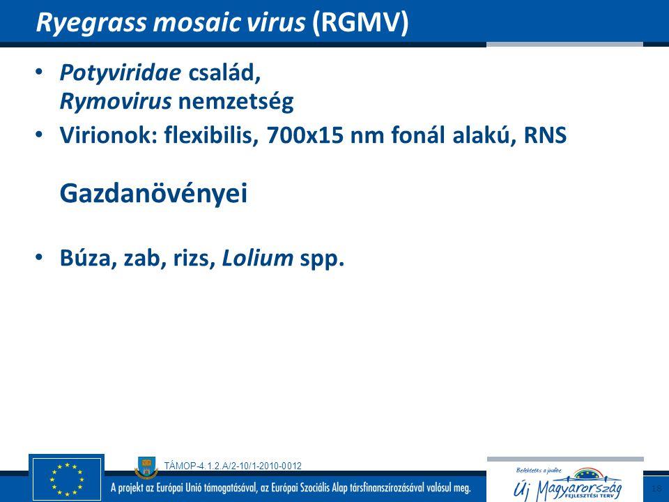 Ryegrass mosaic virus (RGMV)
