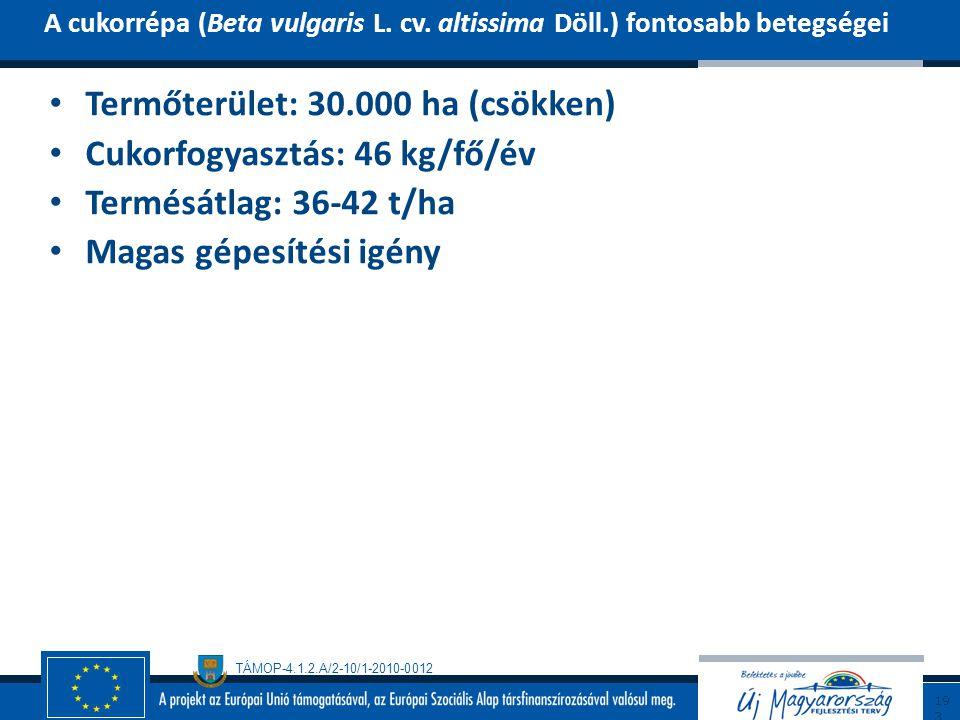 Termőterület: 30.000 ha (csökken) Cukorfogyasztás: 46 kg/fő/év