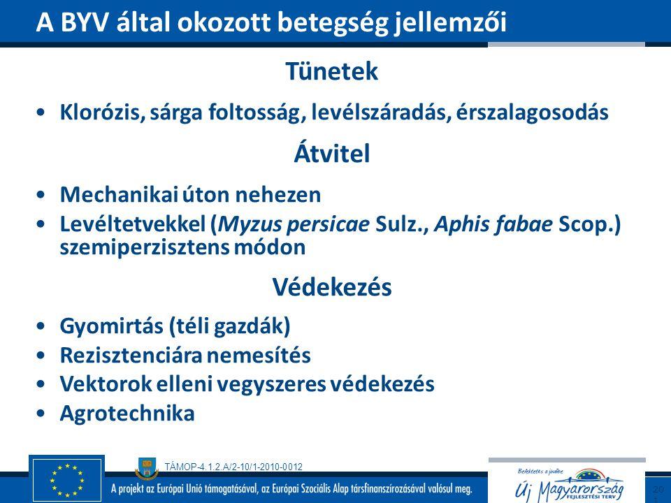 A BYV által okozott betegség jellemzői