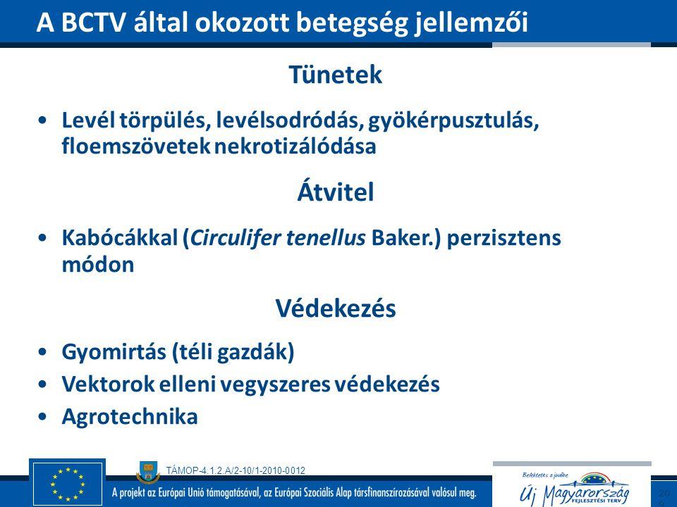 A BCTV által okozott betegség jellemzői