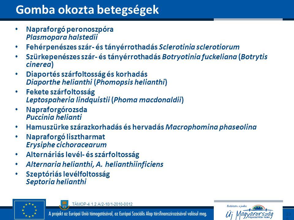 Gomba okozta betegségek