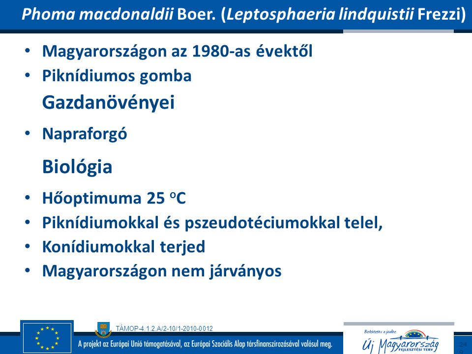 Biológia Phoma macdonaldii Boer. (Leptosphaeria lindquistii Frezzi)