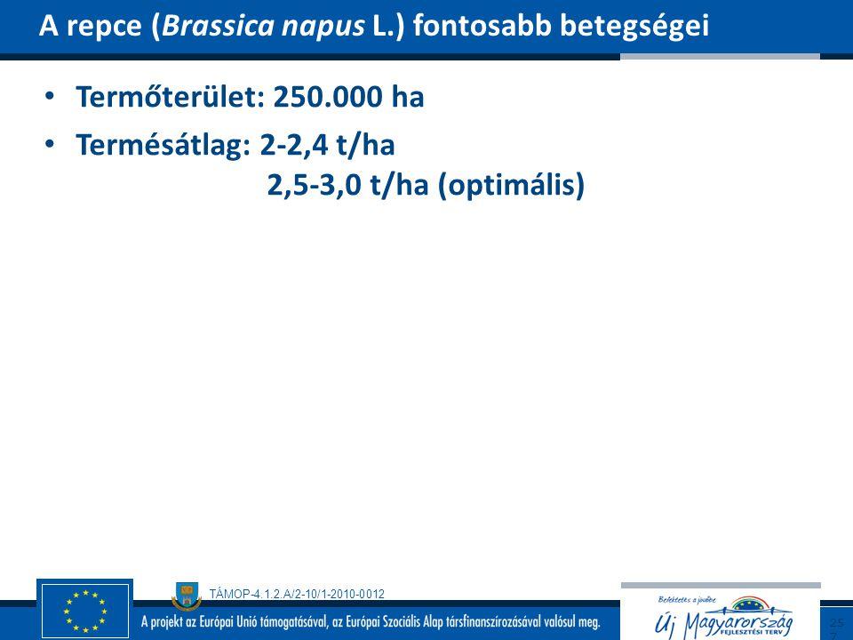 A repce (Brassica napus L.) fontosabb betegségei