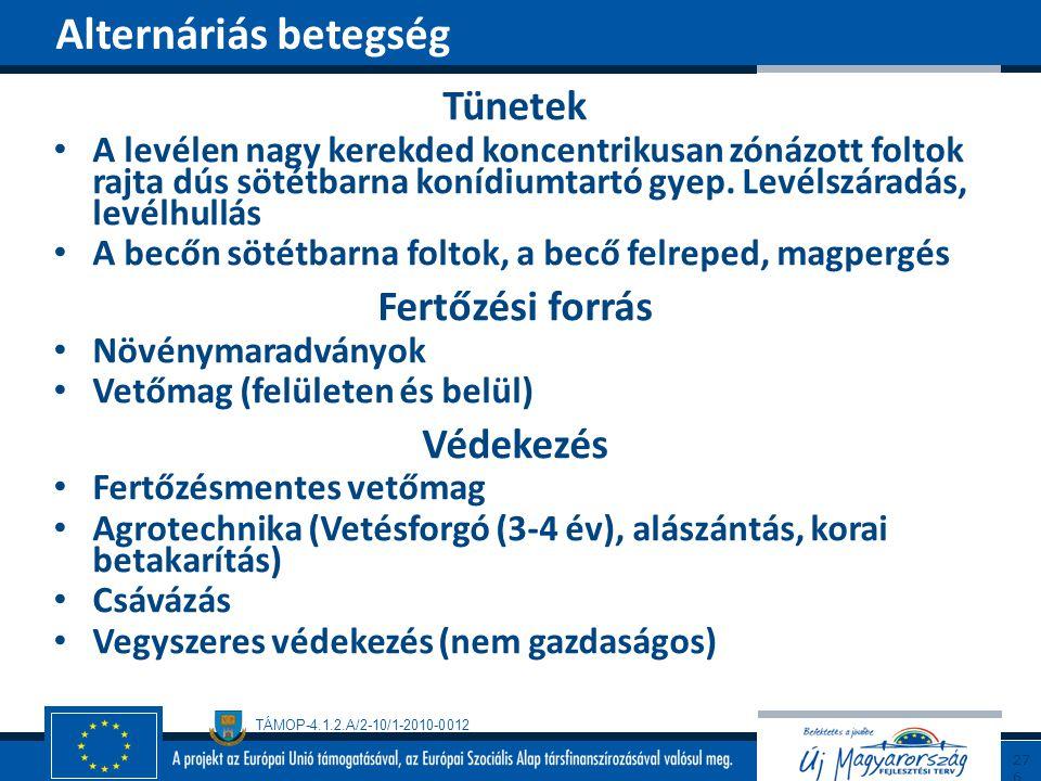 Alternáriás betegség Tünetek Fertőzési forrás Védekezés