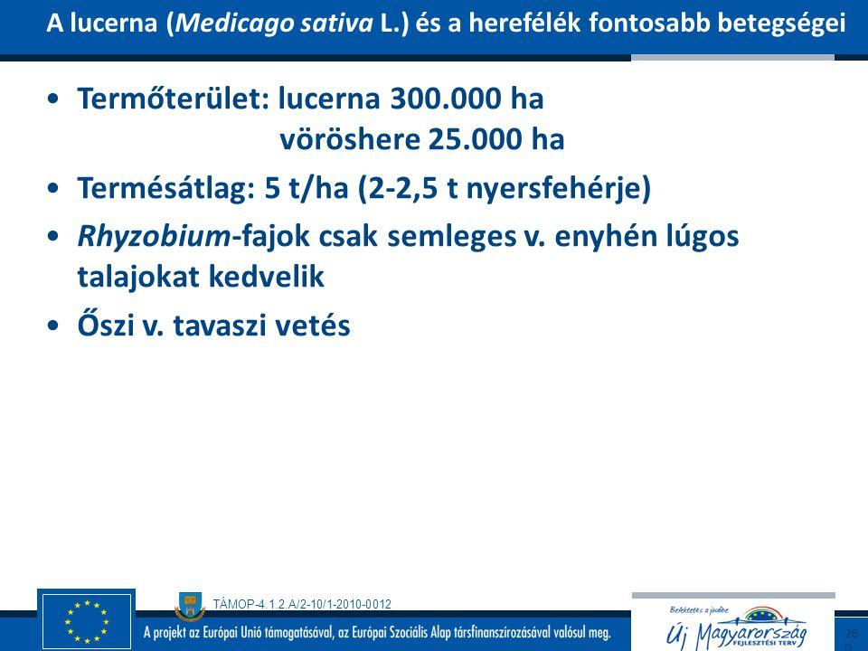 Termőterület: lucerna 300.000 ha vöröshere 25.000 ha
