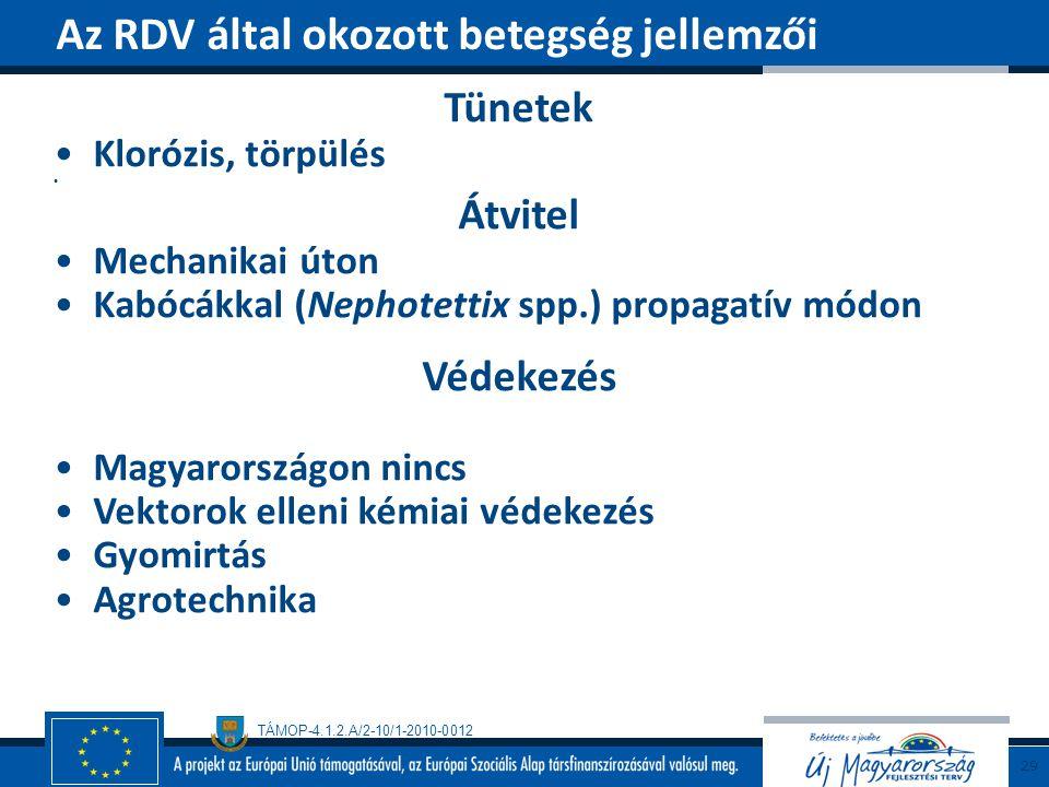 Az RDV által okozott betegség jellemzői