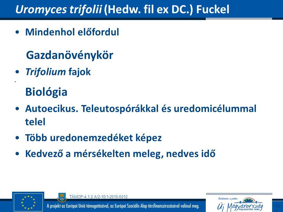 Uromyces trifolii (Hedw. fil ex DC.) Fuckel