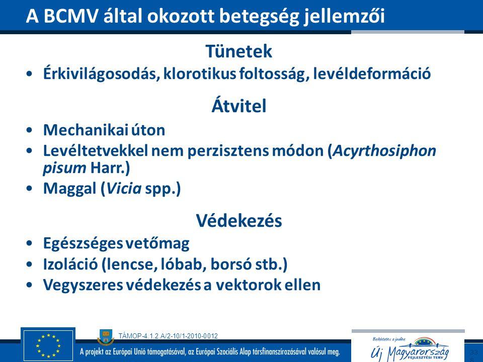 A BCMV által okozott betegség jellemzői