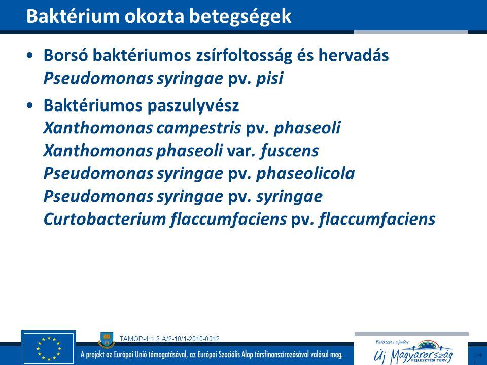 Baktérium okozta betegségek